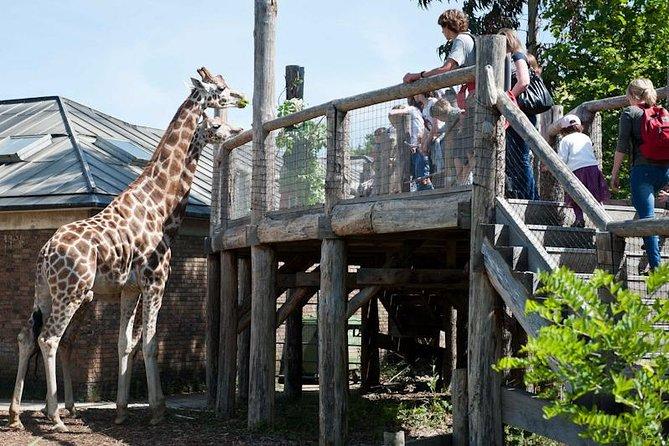tutto sullo zoo di Londra