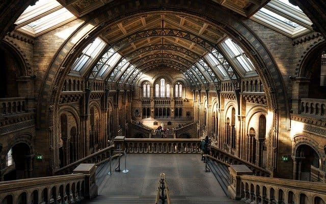 Riapertura musei di Londra