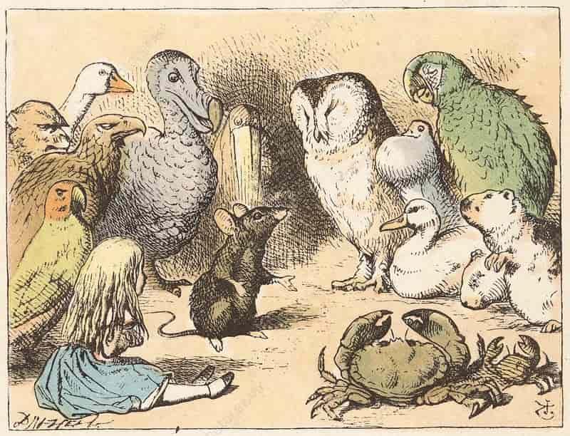 personaggi di Alice nel paese delle meraviglie